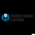 Haltermann Carless logo